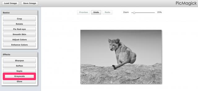 PicMagickの白黒加工画面
