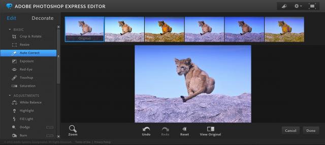 Photoshop Express Editorの自動補正の加工画面