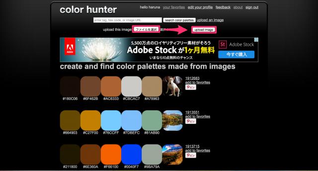 Color Hunterのトップページ